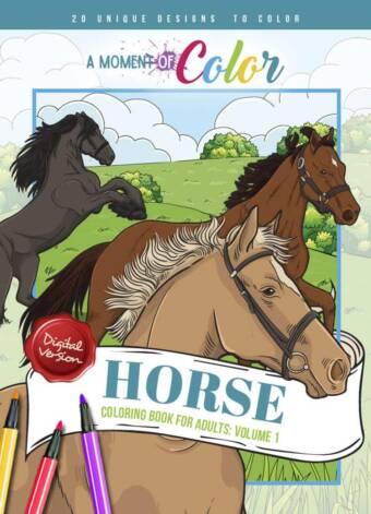 Horse Volume 1